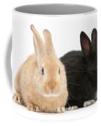 Black And Sandy Rabbits Coffee Mug