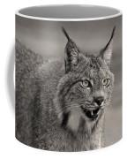 Black And White Lynx Coffee Mug