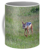 Black Backed Jackal Coffee Mug
