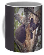 Black Bear Cub No 3224 Coffee Mug