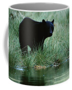 Black Bear Ursus Americanus Coffee Mug