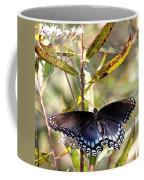 Black Beauty In The Bush Coffee Mug