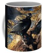 Black Bird With Yellow Eyes Coffee Mug