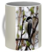Black-capped Chickadee On Staff Coffee Mug
