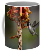 Black Chinned Hummingbird  Coffee Mug