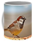 Black-chinned Sparrow Coffee Mug