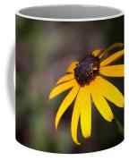 Black Eyed Susan With Young Bee Coffee Mug