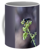 Black Flower Feeding Wasp Coffee Mug