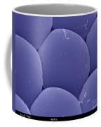 Black Fly Eye, Sem Coffee Mug