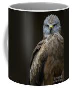 Black Kite 2 Coffee Mug