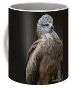 Black Kite 4 Coffee Mug by Heiko Koehrer-Wagner