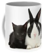 Black Kitten Dutch Rabbit Coffee Mug
