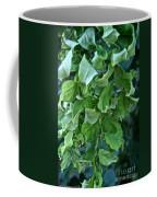 Black Locust Coffee Mug