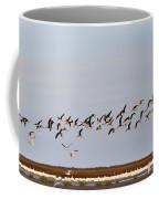 Black Skimmers In Flight Coffee Mug
