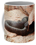 Black Snake Coffee Mug
