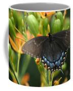 Black Swallowtail Coffee Mug