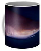 Black Tip Reef Shark Coffee Mug