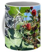 Blackberry On The Rock 03 Coffee Mug