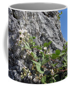 Blackberry On The Rock 04 Coffee Mug