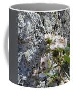 Blackberry On The Rock Square Format Coffee Mug
