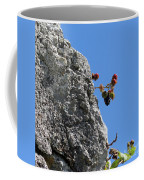 Blackberry On The Rock Top. Square Format Coffee Mug