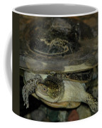 Blandings Swimming Turtle Coffee Mug