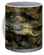Blandings Turtle Coffee Mug