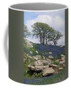 Blanketed In Blue Coffee Mug