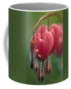 Bleeding Hearts Coffee Mug
