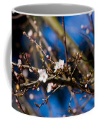 Blooming Tree With White Flowers Coffee Mug