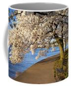 Blossoming Cherry Trees Coffee Mug