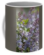 Blossoming Hyacinthiflora Lilacs Coffee Mug