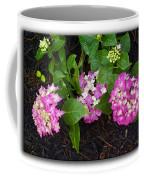 Blossoms And Rain Drops Coffee Mug