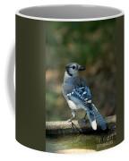 Blu-jay Coffee Mug
