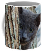 Russian Blue,cat  Coffee Mug