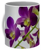 Blue Charm X Aridang Blue Orchid - 3 Coffee Mug