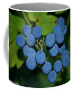 Blue Cohosh Coffee Mug