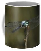 Blue Dasher 8668 3297 Coffee Mug