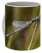 Blue Dasher Coffee Mug