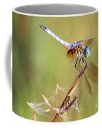 Blue Dasher On Twig Coffee Mug