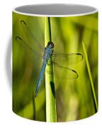 Blue Dragonfly 1 Coffee Mug