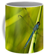 Blue Dragonfly 10 Coffee Mug