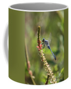 Blue Dragonfly On Pink Flower Coffee Mug