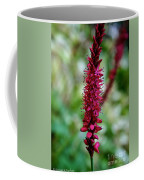 Blue Eyes Pink Petals Coffee Mug