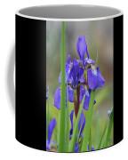 Blue Flag Iris - Dsc03987 Coffee Mug