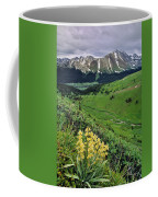 Blue Grouse Pass, Willmore Wilderness Coffee Mug