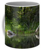 Blue Heron Long Pond Wmnf Coffee Mug