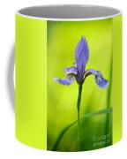 Blue Japanese Iris Coffee Mug