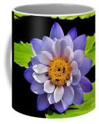 Blue Lily Coffee Mug
