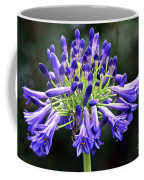 Blue Lily Of The Nile Coffee Mug
